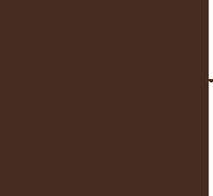 Selección exclusiva de cacao